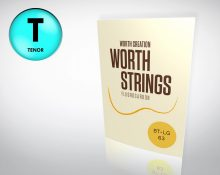 Worth Strings BT-LG Tenor Ukulele Set - Low-G